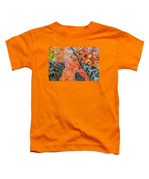 Looking Up - 9743 Toddler T-Shirt