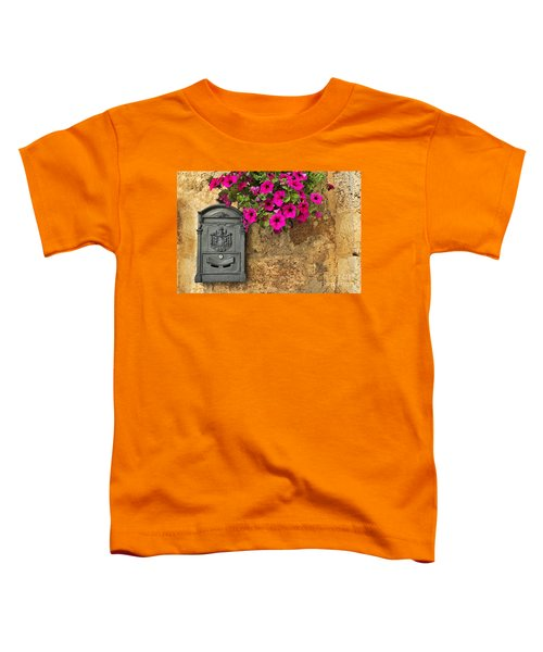 Mailbox With Petunias Toddler T-Shirt by Silvia Ganora