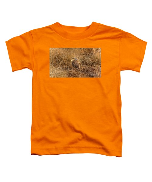 Meadowlark Hiding In Grass Toddler T-Shirt by Robert Frederick