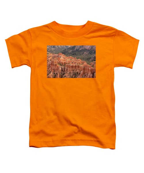 Mighty Fortress Toddler T-Shirt