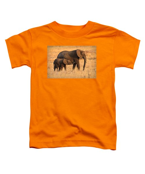 Mother And Baby Elephants Toddler T-Shirt