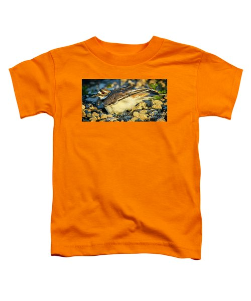 Mother Killdeer 3 Toddler T-Shirt