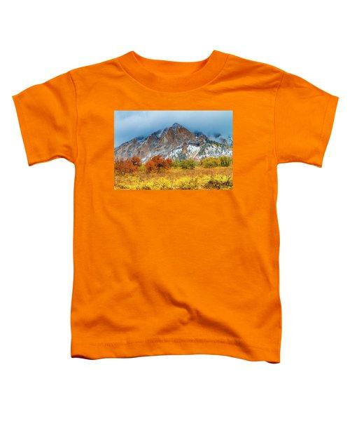 Mountain Autumn Color Toddler T-Shirt