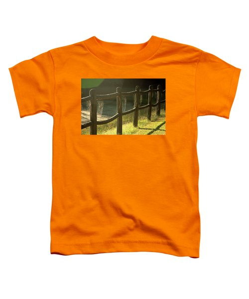 Multiple Spiderwebs On Wooden Fence Toddler T-Shirt