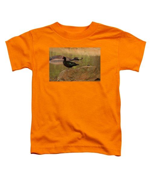 Muscovy Duck Toddler T-Shirt