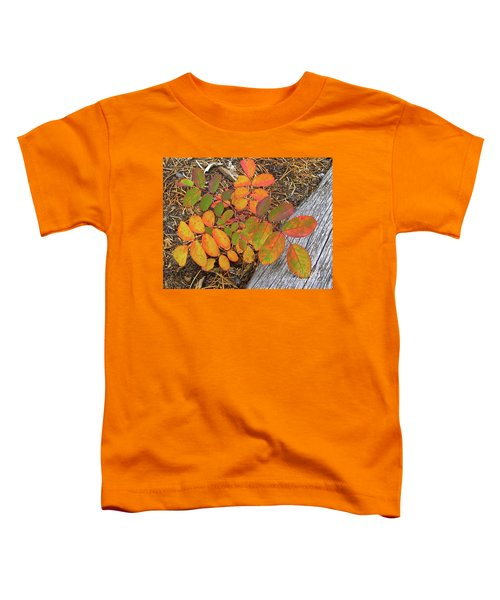New And Old Life Cycles Toddler T-Shirt