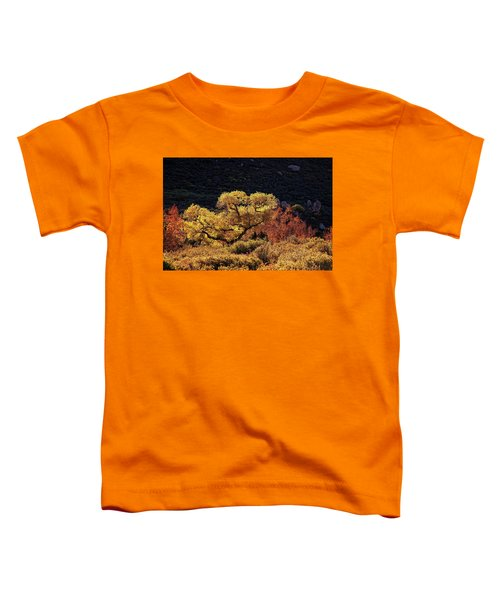 November In Arizona Toddler T-Shirt
