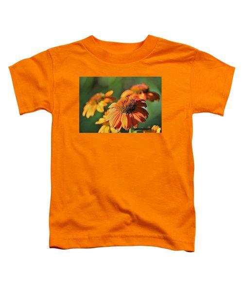 Orange Cone Flowers In Morning Light Toddler T-Shirt