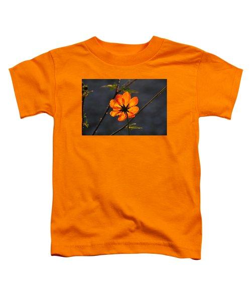 Orange Cosmo Toddler T-Shirt