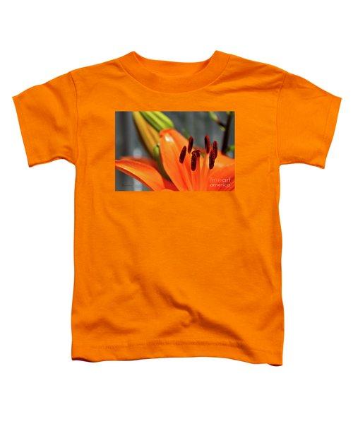 Orange Lily Close Up Toddler T-Shirt