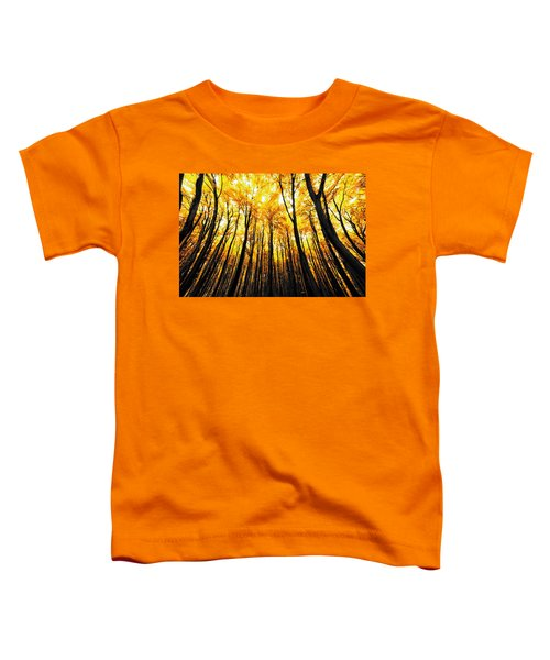 Power Of The Sun Toddler T-Shirt
