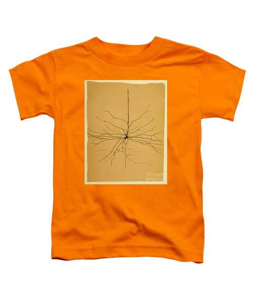 Pyramidal Cell In Cerebral Cortex, Cajal Toddler T-Shirt