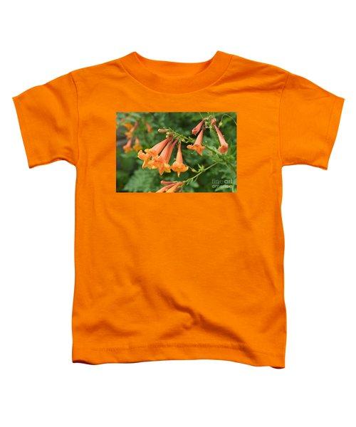 Qantu Toddler T-Shirt