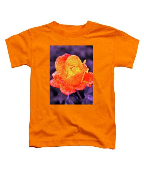 Raindrops On Roses Toddler T-Shirt