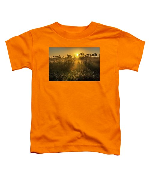 Rays Of Light Toddler T-Shirt