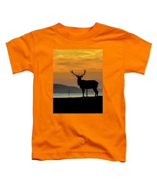 Reyes Morning  Toddler T-Shirt