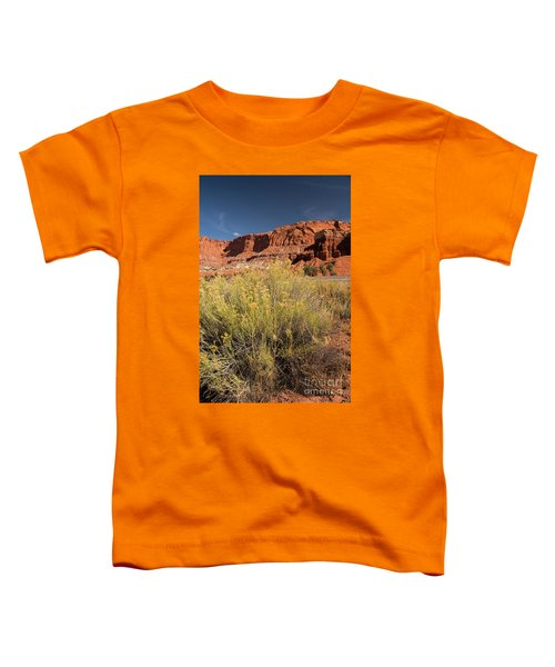 Scenery Capital Reef National Park Toddler T-Shirt