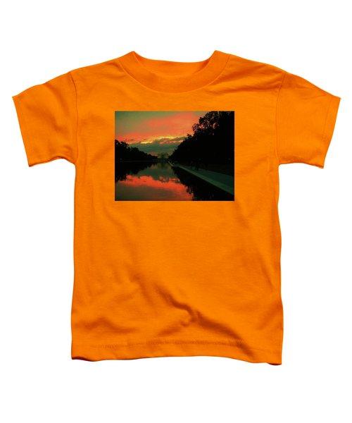 Secrets Of Dc Toddler T-Shirt