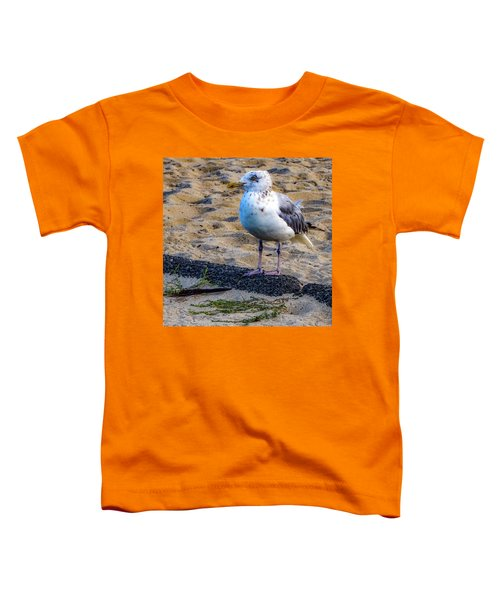 See The Gull Toddler T-Shirt