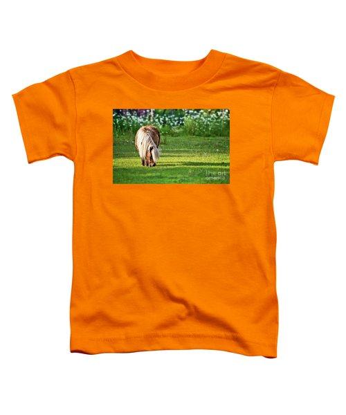 Shetland Pony Toddler T-Shirt