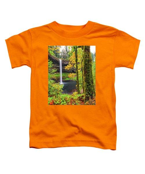 South Silver Falls Toddler T-Shirt