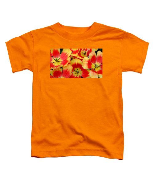 Spring Is Here Toddler T-Shirt