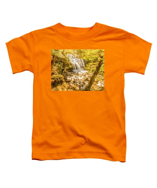 Spring Waterfall Toddler T-Shirt