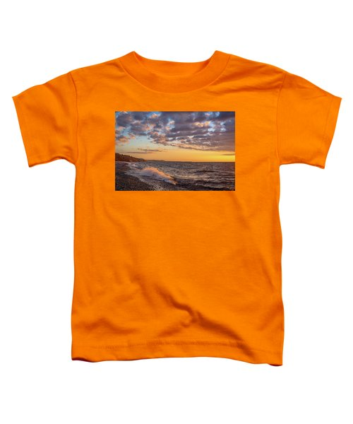 Springtime On Agate Beach Toddler T-Shirt