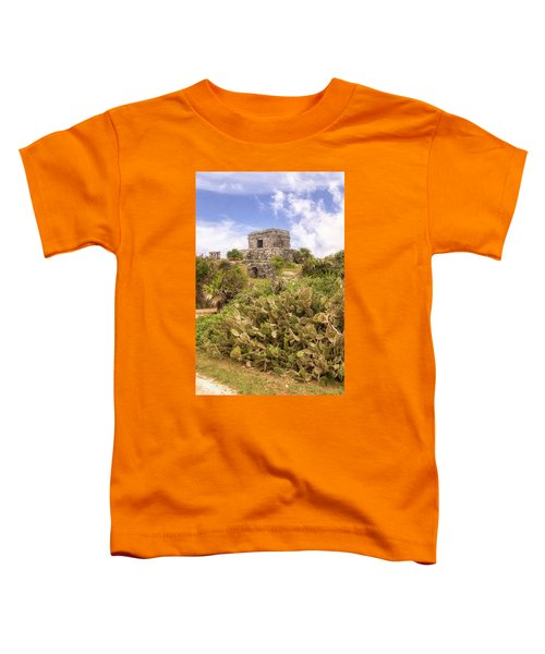 Step To The Heavens Toddler T-Shirt