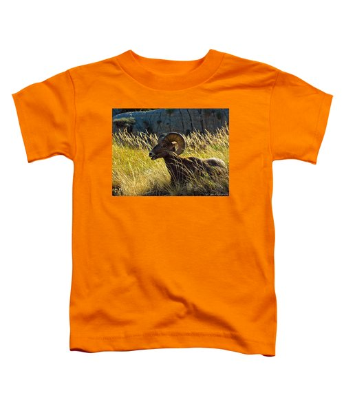 Still As A Statue Toddler T-Shirt