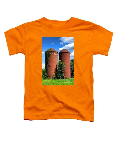 Stout 1931 Toddler T-Shirt