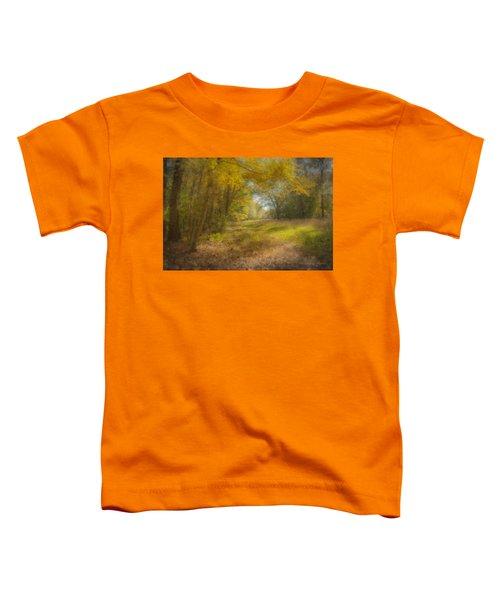 Sunlit Meadow In Borderland Toddler T-Shirt
