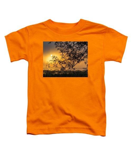 Sunrise Fog Toddler T-Shirt
