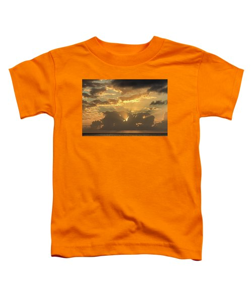 Sun's Rays Toddler T-Shirt