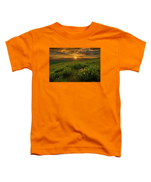 Sunset At Steptoe Butte Toddler T-Shirt