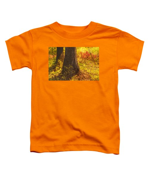 Sunstream Toddler T-Shirt