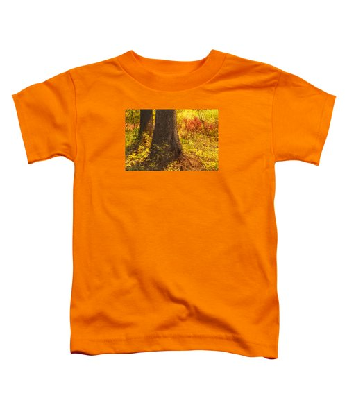 Sunstream Toddler T-Shirt