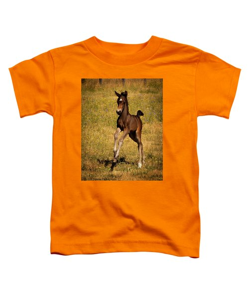 Surprise Party Toddler T-Shirt