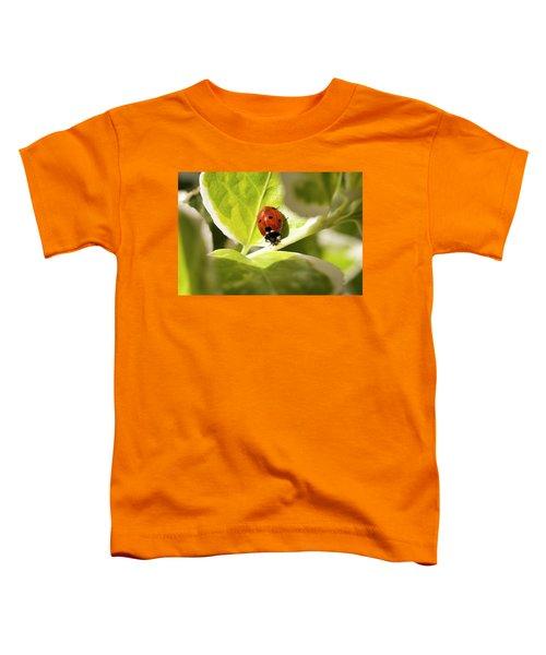 The Ladybug  Toddler T-Shirt