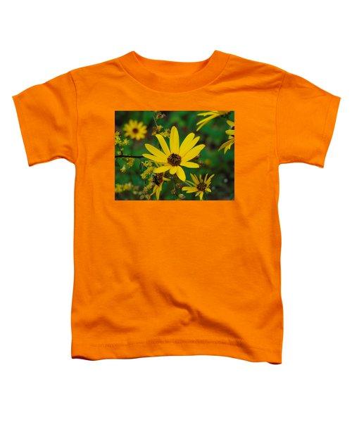 Trail Views Toddler T-Shirt