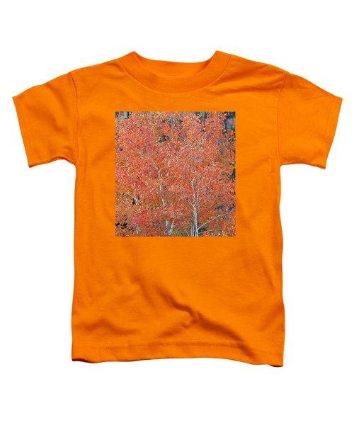 Translucent Aspen Orange Toddler T-Shirt