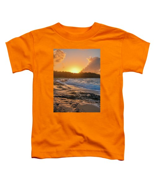 Turtle Bay Sunset 3 Toddler T-Shirt