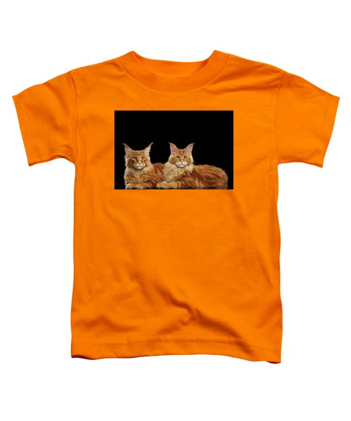 Two Ginger Maine Coon Cat On Black Toddler T-Shirt