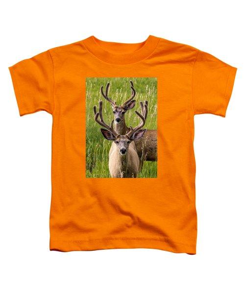 Velvet Bucks Toddler T-Shirt