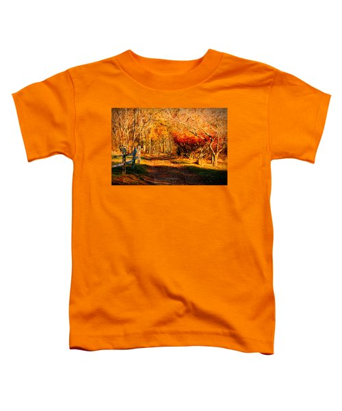 Walking Down The Autumn Path Toddler T-Shirt