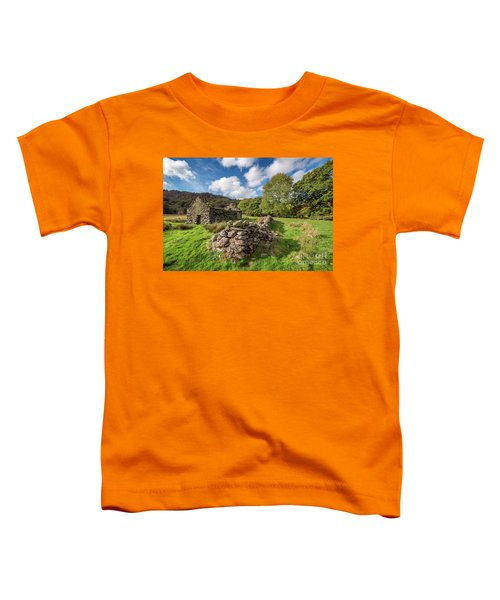 Welsh Cottage Ruin Toddler T-Shirt