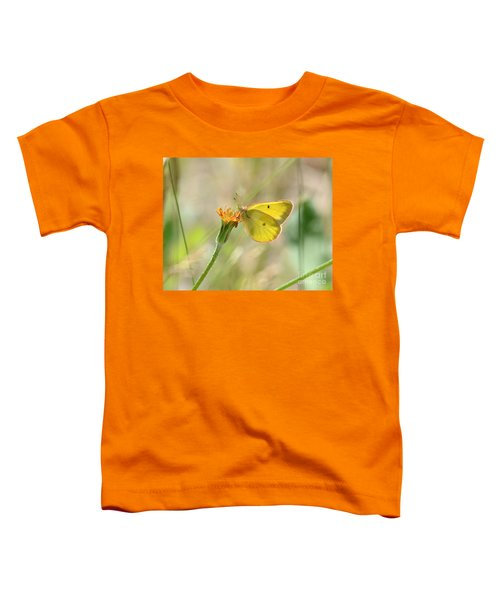 Wester Sulfur Butterfly Toddler T-Shirt