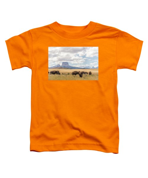 Where The Buffalo Roam Toddler T-Shirt by Alex Lapidus