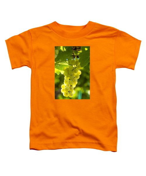 White Wine Grapes Lit By The Sun Toddler T-Shirt