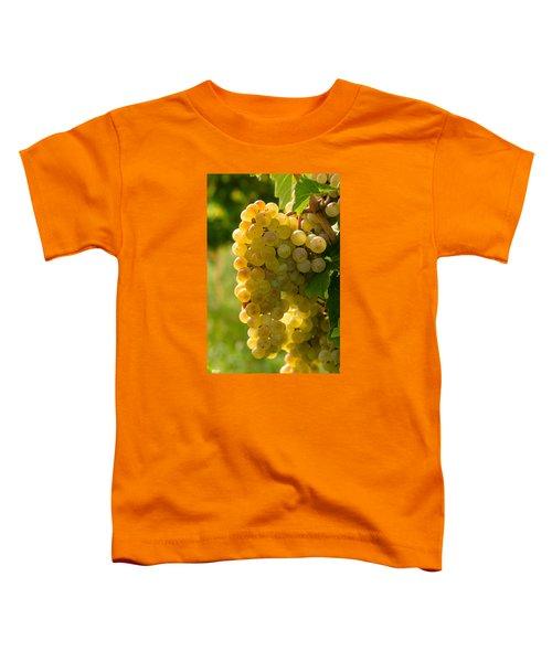 White Wine Grapes Toddler T-Shirt